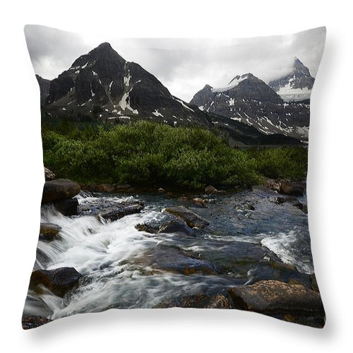 Mount Assiniboine Throw Pillow featuring the photograph Mount Assiniboine Canada 15 by Bob Christopher