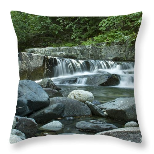 Stream Throw Pillow featuring the photograph Mountain Stream by Idaho Scenic Images Linda Lantzy