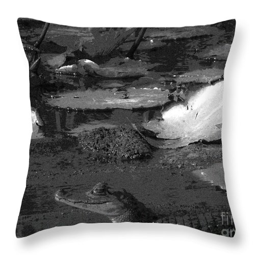 Throw Pillow featuring the photograph Mr. Caiman by Camille Pascoe