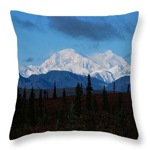 Mt Mckinley Throw Pillow featuring the photograph Denali by Ronnie Glover