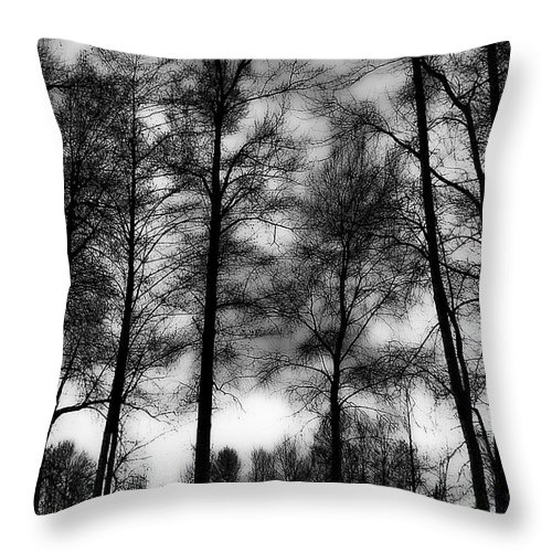 Hdr Throw Pillow featuring the photograph Mt Vernon Landscape by David Patterson