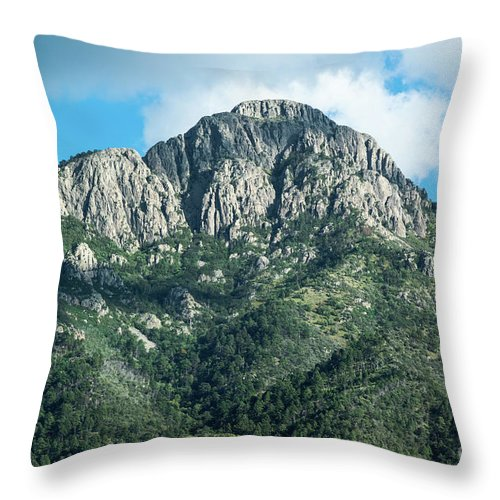 Mt. Wrightson Throw Pillow featuring the photograph Mt. Wrightson Summit by Charles Norkoli