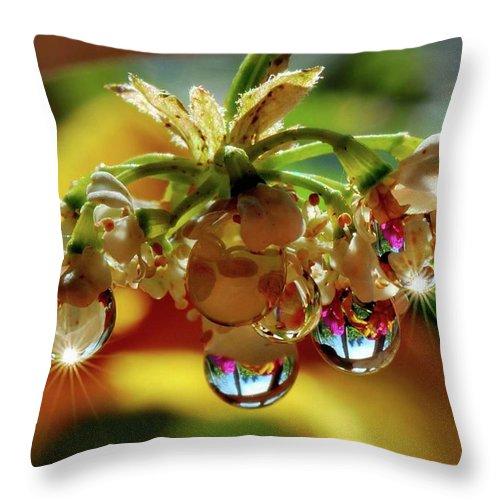 Macro Throw Pillow featuring the photograph Multicolored Drops by Yuri Hope