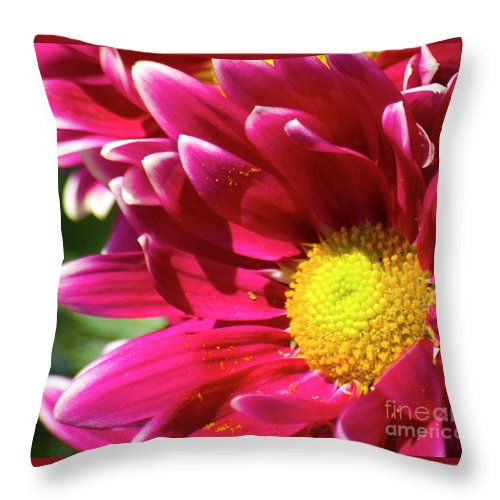 Flower Throw Pillow featuring the photograph Mum 1 by Jim And Emily Bush