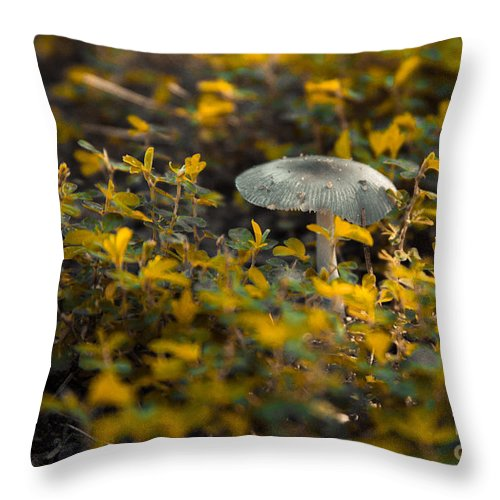 706-325-7075 Throw Pillow featuring the photograph Mushroom 1 by Heather Roper