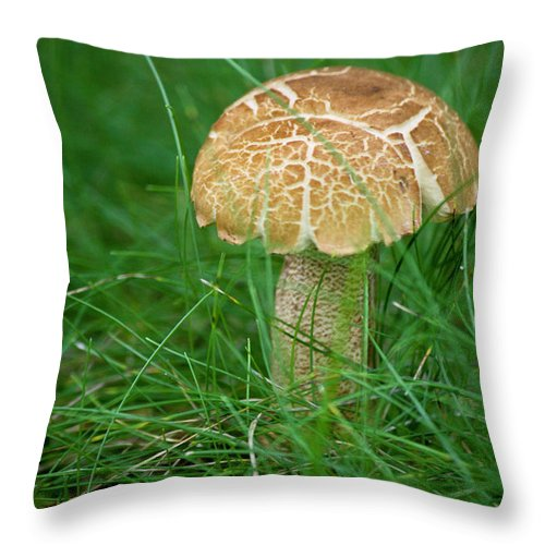 Fungus Throw Pillow featuring the photograph Mushroom In The Grass by Teresa Mucha