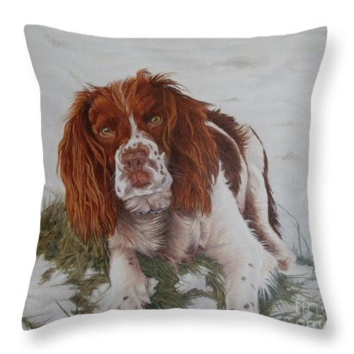 Dog Throw Pillow featuring the painting Muttley-the Best Springer Spaniel by Pauline Sharp