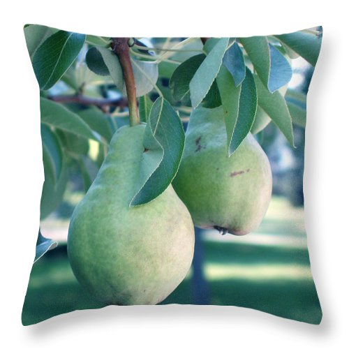 Pears Throw Pillow featuring the painting My Brothers Pear Tree by Wayne Potrafka