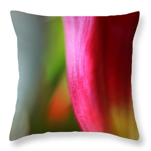 Tulip Throw Pillow featuring the photograph My Cup Overflows by Amanda Barcon