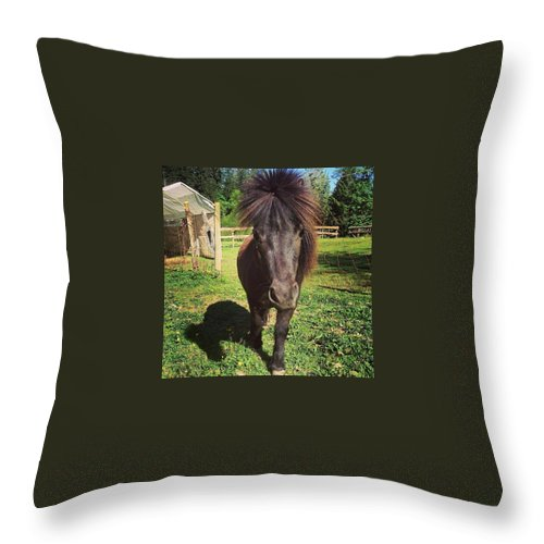 Horse Throw Pillow featuring the photograph My Little Pony by Deanna Cann