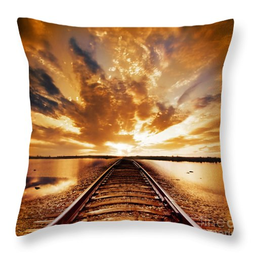 Water Throw Pillow featuring the photograph My Way by Jacky Gerritsen