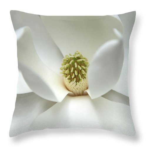 Magnolia Throw Pillow featuring the photograph Mysteriously by Amanda Barcon