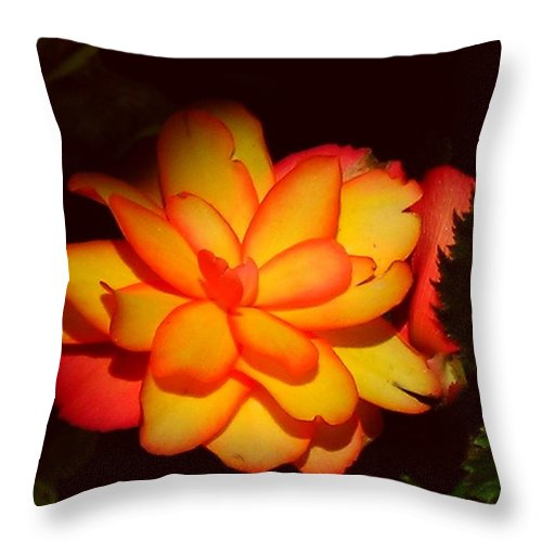 Flower Throw Pillow featuring the photograph Mystic by Juergen Weiss