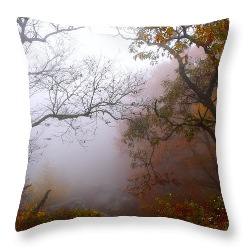 Ann Keisling Throw Pillow featuring the photograph Mystical Fog 2 by Ann Keisling