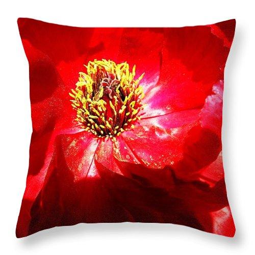Garden Throw Pillow featuring the photograph Mystical ... by Juergen Weiss