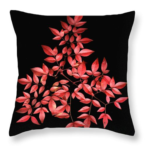 Leaves Throw Pillow featuring the photograph Nadina Branch by Wayne Potrafka