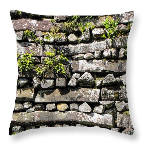 Nan Madol Throw Pillow featuring the photograph Nan Madol Wall2 by Dan Norton
