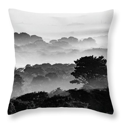 Nantucket Throw Pillow featuring the photograph Nantucket Middle Moors In Fog by Katherine Gendreau