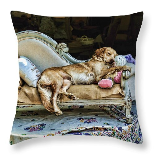 Dog Throw Pillow featuring the photograph Nap Time by Edward Sobuta