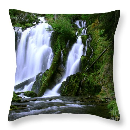 Waterfall Throw Pillow featuring the photograph National Creek Falls 02 by Peter Piatt
