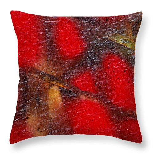 Skip Hunt Throw Pillow featuring the photograph National Treasure by Skip Hunt