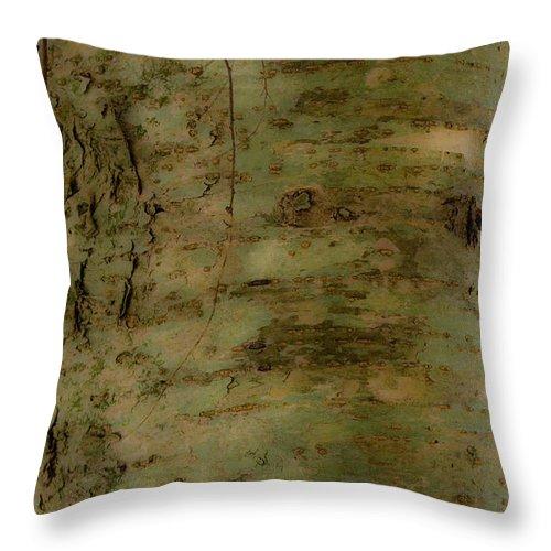 Joy Throw Pillow featuring the photograph Native Tree by Douglas Barnett