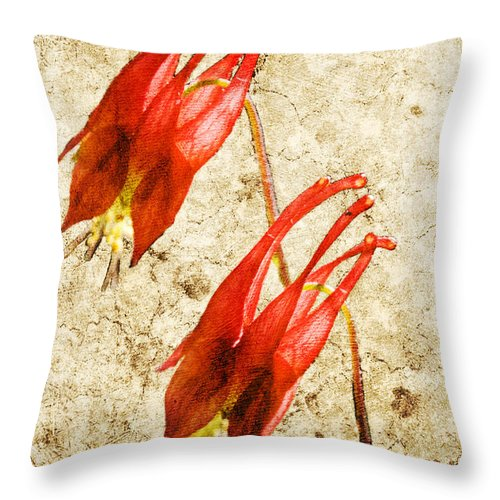 Columbine Throw Pillow featuring the digital art Native Virginia Columbine by Teresa Mucha