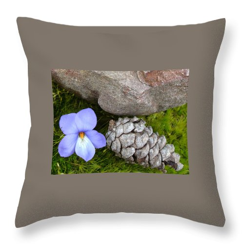 Kathy Bucari Throw Pillow featuring the photograph Natural Beauty by Kathy Bucari