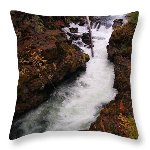 Water Throw Pillow featuring the photograph Natural Bridge Gorge by Teri Schuster
