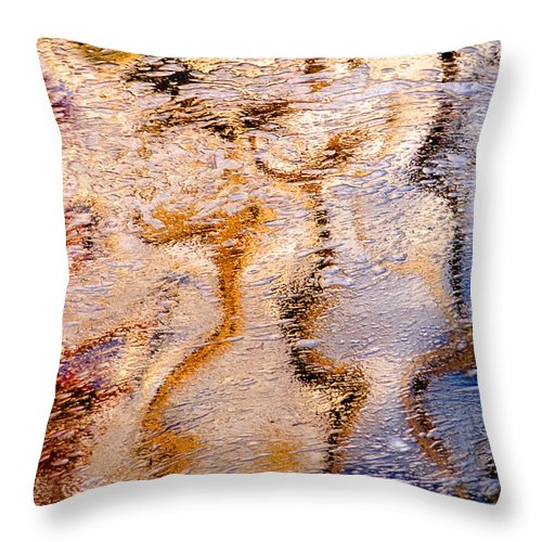 Abstracts Throw Pillow featuring the photograph Natural Curves by Linda McRae
