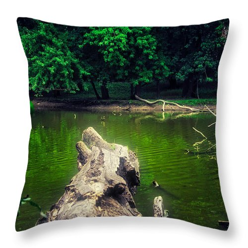 River Throw Pillow featuring the photograph Natural Fishing Pier by Thomas Woolworth
