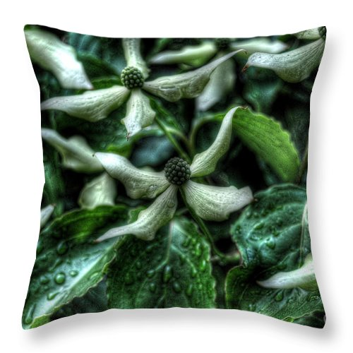 Flowers Throw Pillow featuring the photograph Natural Geometry by Chris Fleming
