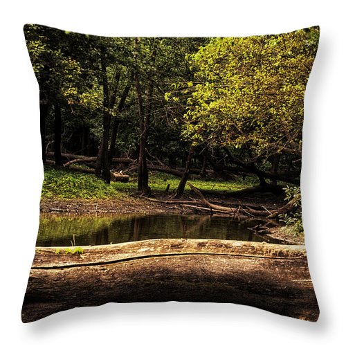 River Throw Pillow featuring the photograph Natural Seating By River by Thomas Woolworth