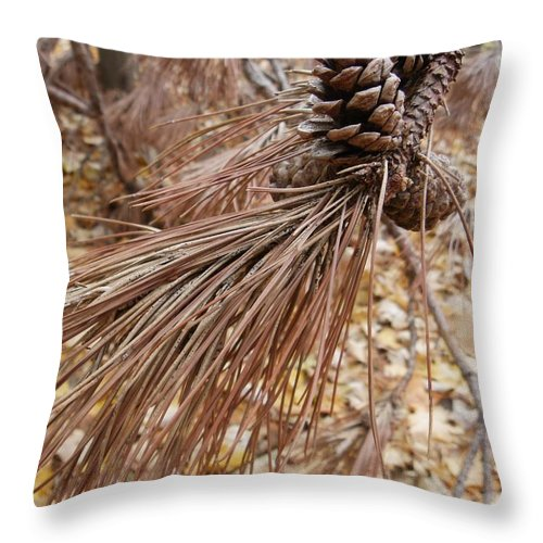Sepia Throw Pillow featuring the photograph Natural Sepia by Peggy King