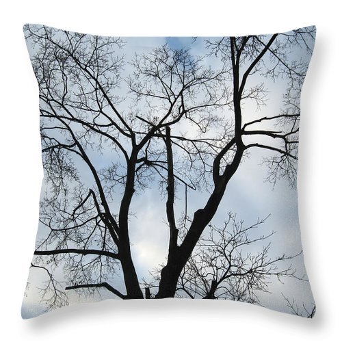 Nature Throw Pillow featuring the photograph Nature - Tree in Toronto by Munir Alawi