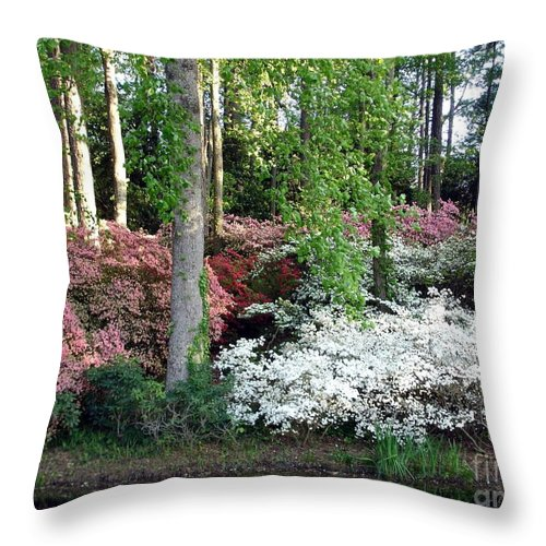 Landscape Throw Pillow featuring the photograph Nature 2 by Shelley Jones