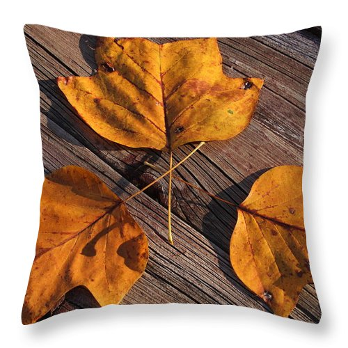 Leaves Throw Pillow featuring the photograph Nature And Me by Lyle Hatch
