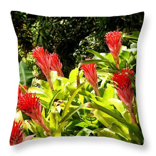 Flowers Throw Pillow featuring the photograph Nature Exotic by The Art of Alice Terrill