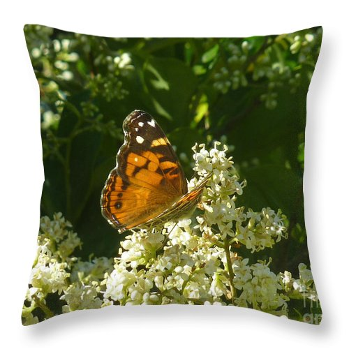 Nature Throw Pillow featuring the photograph Nature In The Wild - A Light In The Darkness by Lucyna A M Green