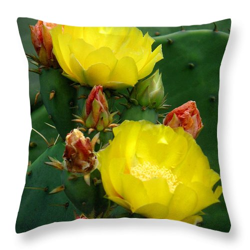 Nature Throw Pillow featuring the photograph Nature In The Wild - A Prickly Backdrop by Lucyna A M Green