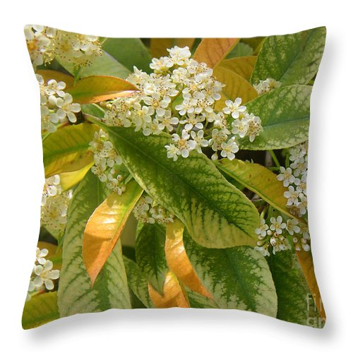 Nature Throw Pillow featuring the photograph Nature In The Wild - A Summer's Day by Lucyna A M Green