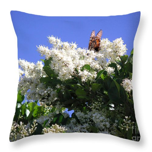 Nature Throw Pillow featuring the photograph Nature In The Wild - Bathing In Blooms by Lucyna A M Green