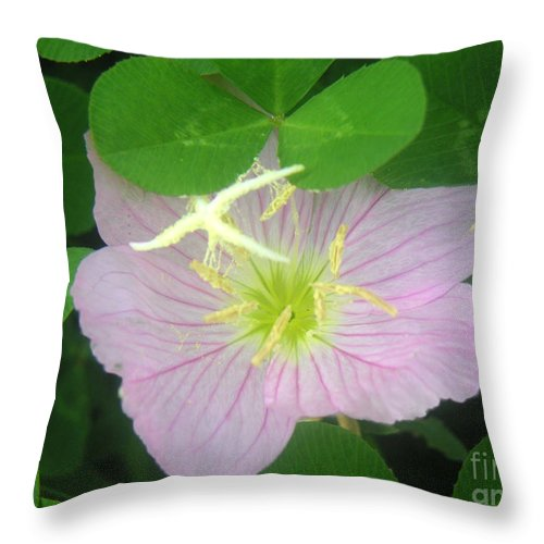 Nature Throw Pillow featuring the photograph Nature In The Wild - Bathing In Clover by Lucyna A M Green