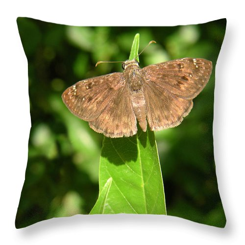 Nature Throw Pillow featuring the photograph Nature In The Wild - Best Seat In The House by Lucyna A M Green