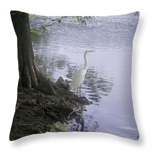 Nature Throw Pillow featuring the photograph Nature In The Wild - Musings By A Lake by Lucyna A M Green