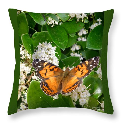 Nature Throw Pillow featuring the photograph Nature In The Wild - On Golden Wings by Lucyna A M Green