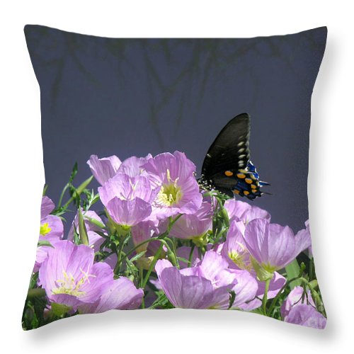 Nature Throw Pillow featuring the photograph Nature In The Wild - Profiles By A Stream by Lucyna A M Green