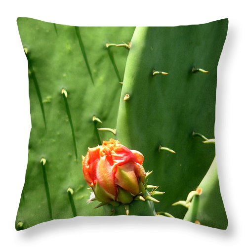 Nature Throw Pillow featuring the photograph Nature In The Wild - Red Against Green by Lucyna A M Green
