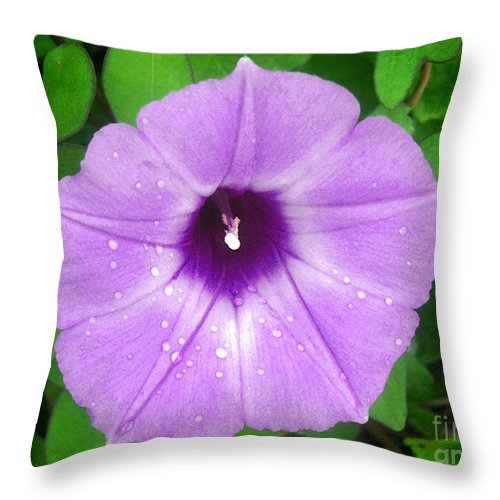 Nature Throw Pillow featuring the photograph Nature In The Wild - Glory In Purple by Lucyna A M Green
