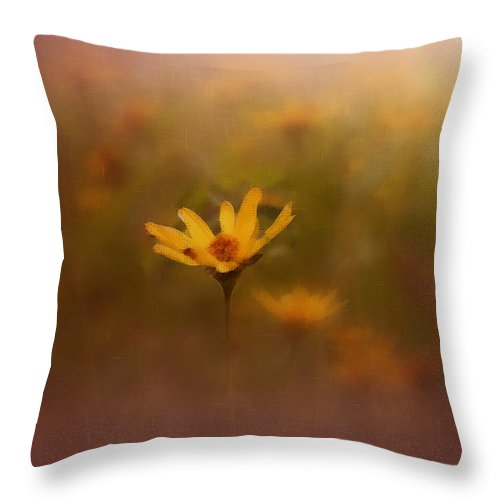 Nature Throw Pillow featuring the photograph Nature by Linda Sannuti